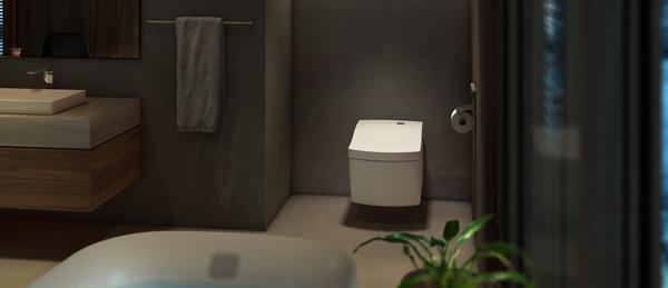 toto toaleta